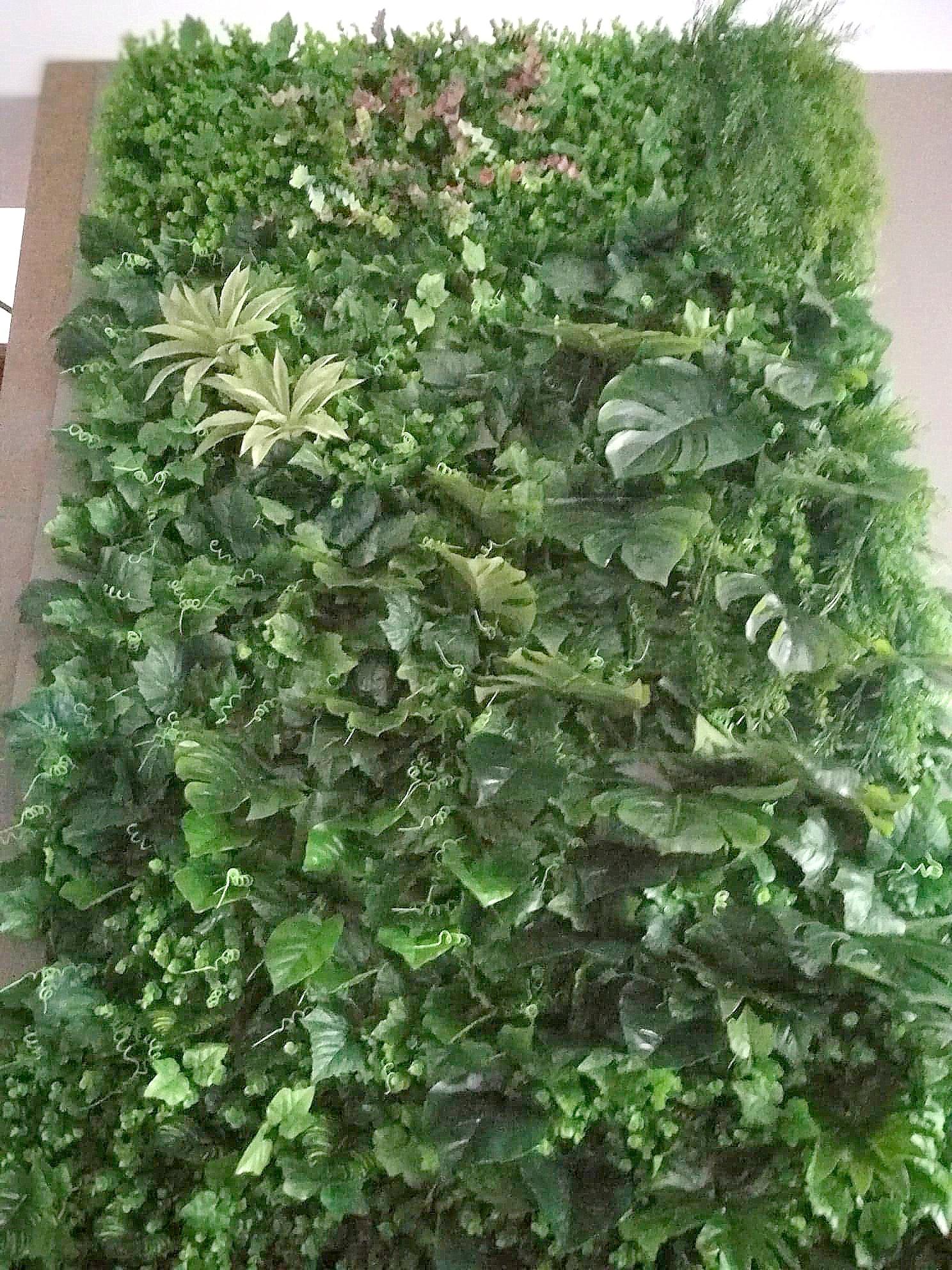 Obraz ze sztucznych roślin z sukulentami i szałwią