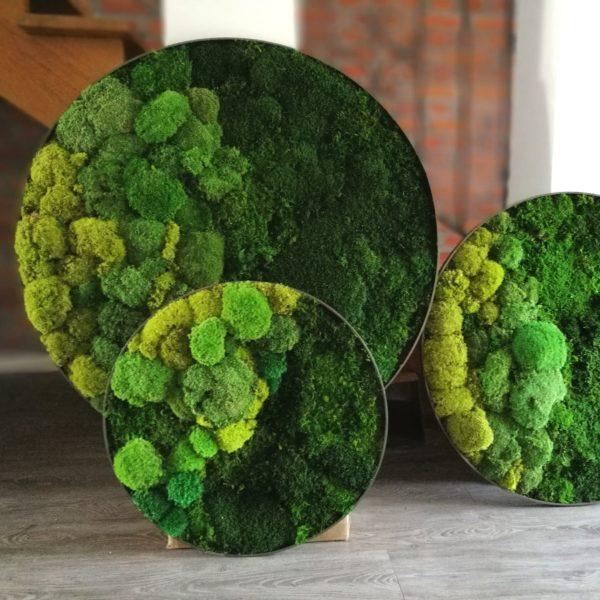 Zestaw kół w zieleni